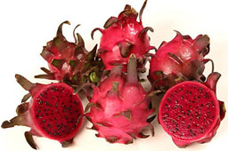 Dragon Fruit Pitaya Pitahaya Dragon Fruit Info