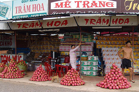marketplace of dragon fruit